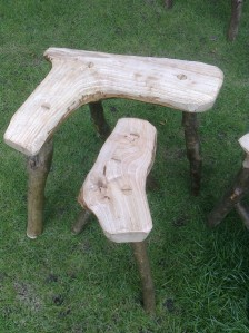 stools older