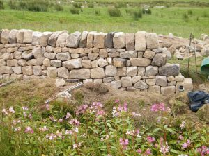 Dry stone wall West Yorkshire