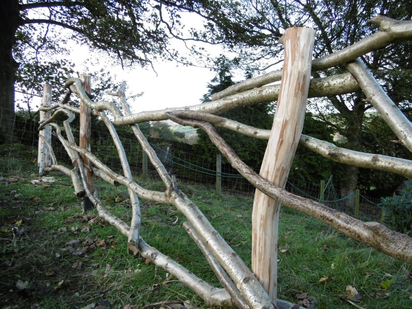 bit of fence